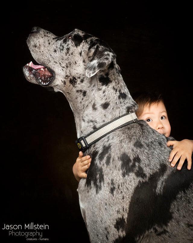 ralph transfer tucson movers crew dog